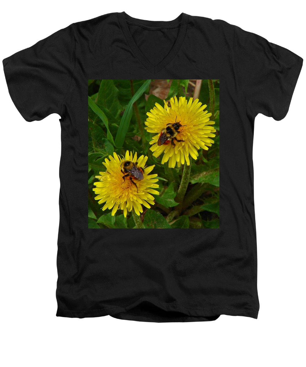 Dandelion Men's V-Neck T-Shirt featuring the photograph Dandelions And Bees by Heather Coen