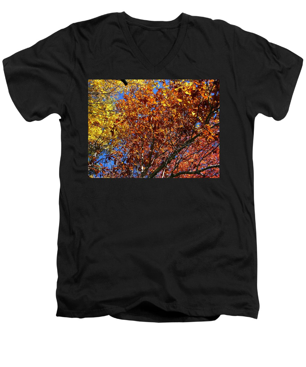 Fall Men's V-Neck T-Shirt featuring the photograph Fall by Flavia Westerwelle