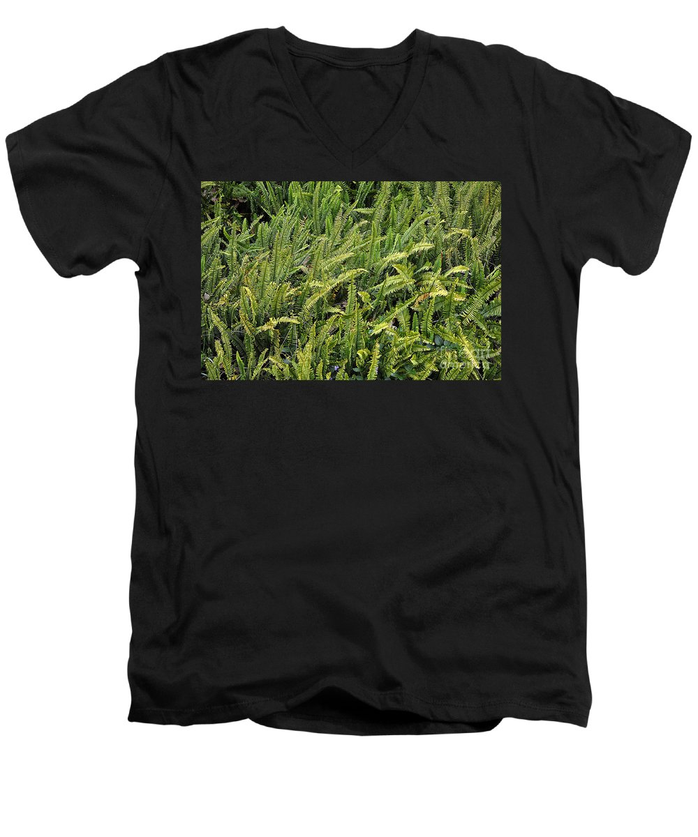 Clay Men's V-Neck T-Shirt featuring the photograph Fern by Clayton Bruster