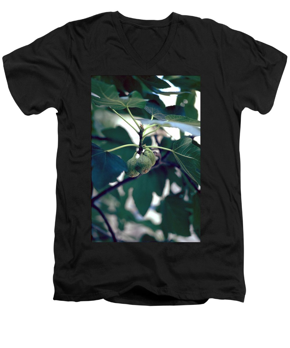 Fig Men's V-Neck T-Shirt featuring the photograph Fig by Flavia Westerwelle