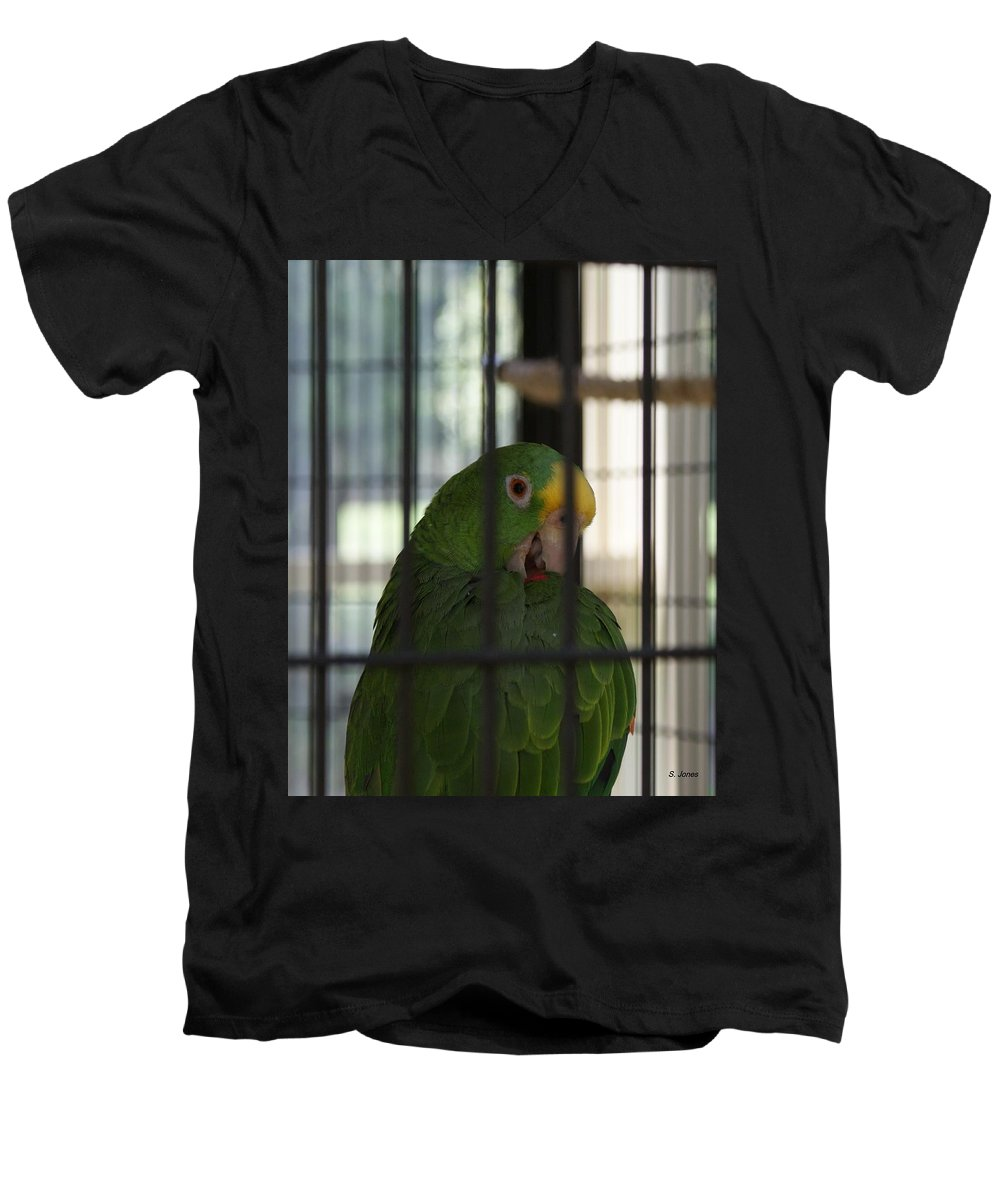 Parrot Men's V-Neck T-Shirt featuring the photograph Framed by Shelley Jones