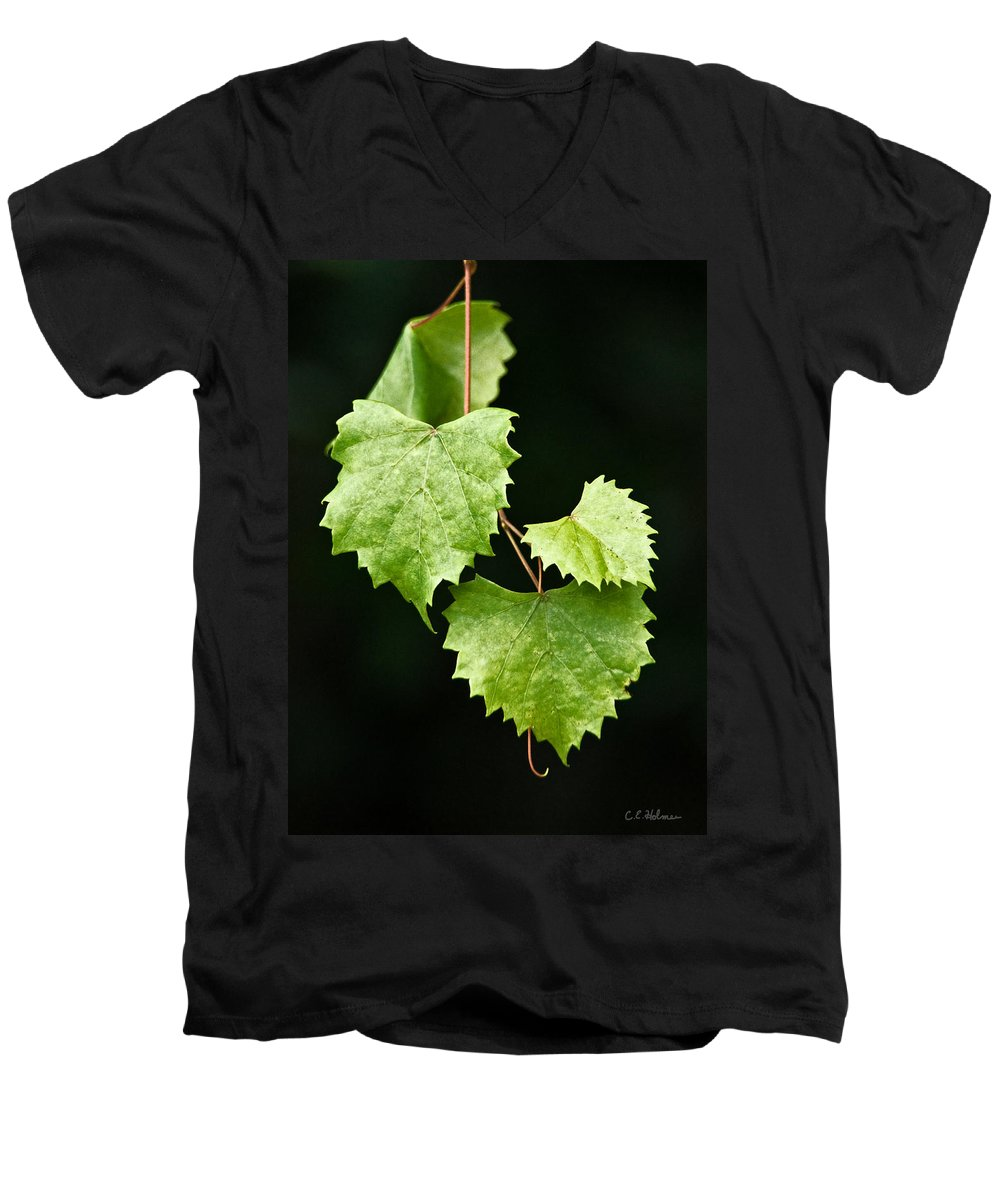 Flora Men's V-Neck T-Shirt featuring the photograph Green Leaves by Christopher Holmes