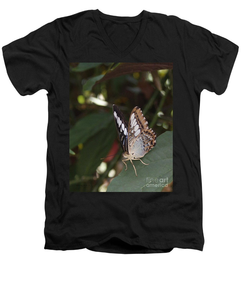 Butterfly Men's V-Neck T-Shirt featuring the photograph Hints Of Blue by Shelley Jones