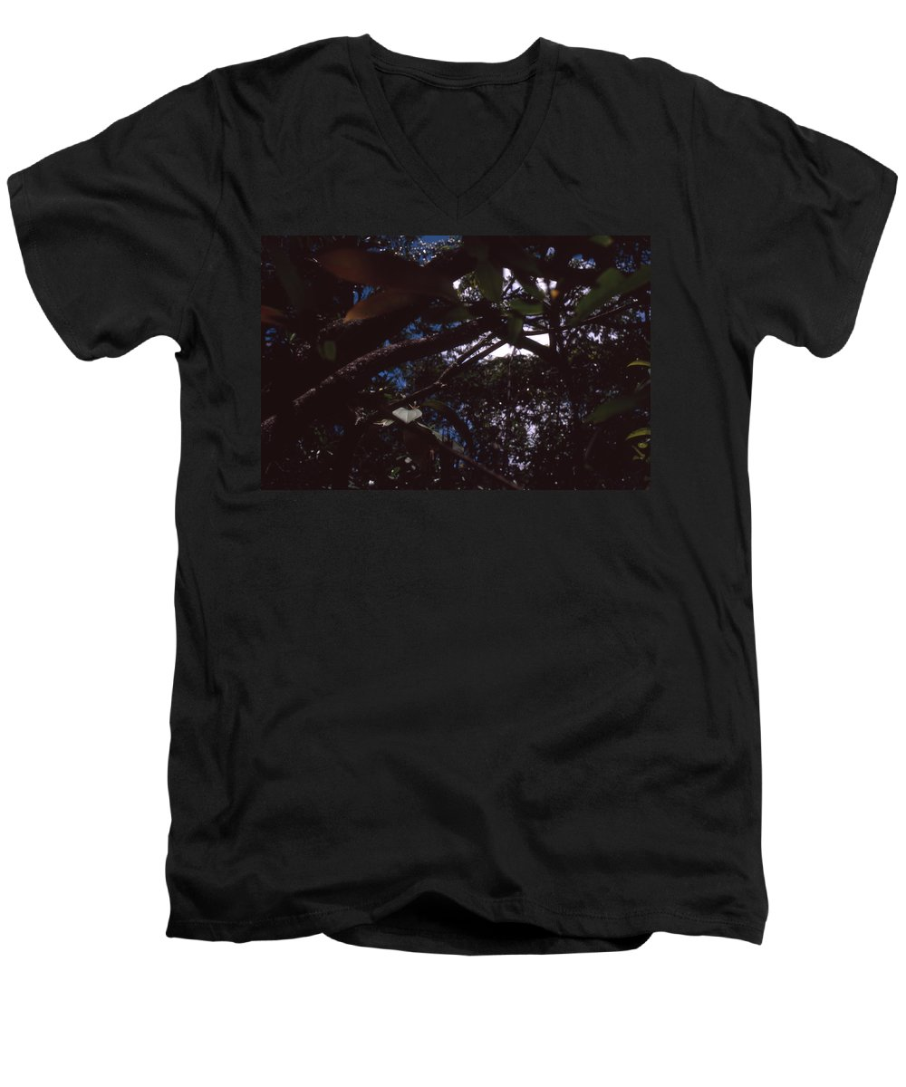 Bahia Men's V-Neck T-Shirt featuring the photograph In A Brazilian Forest by Patrick Klauss