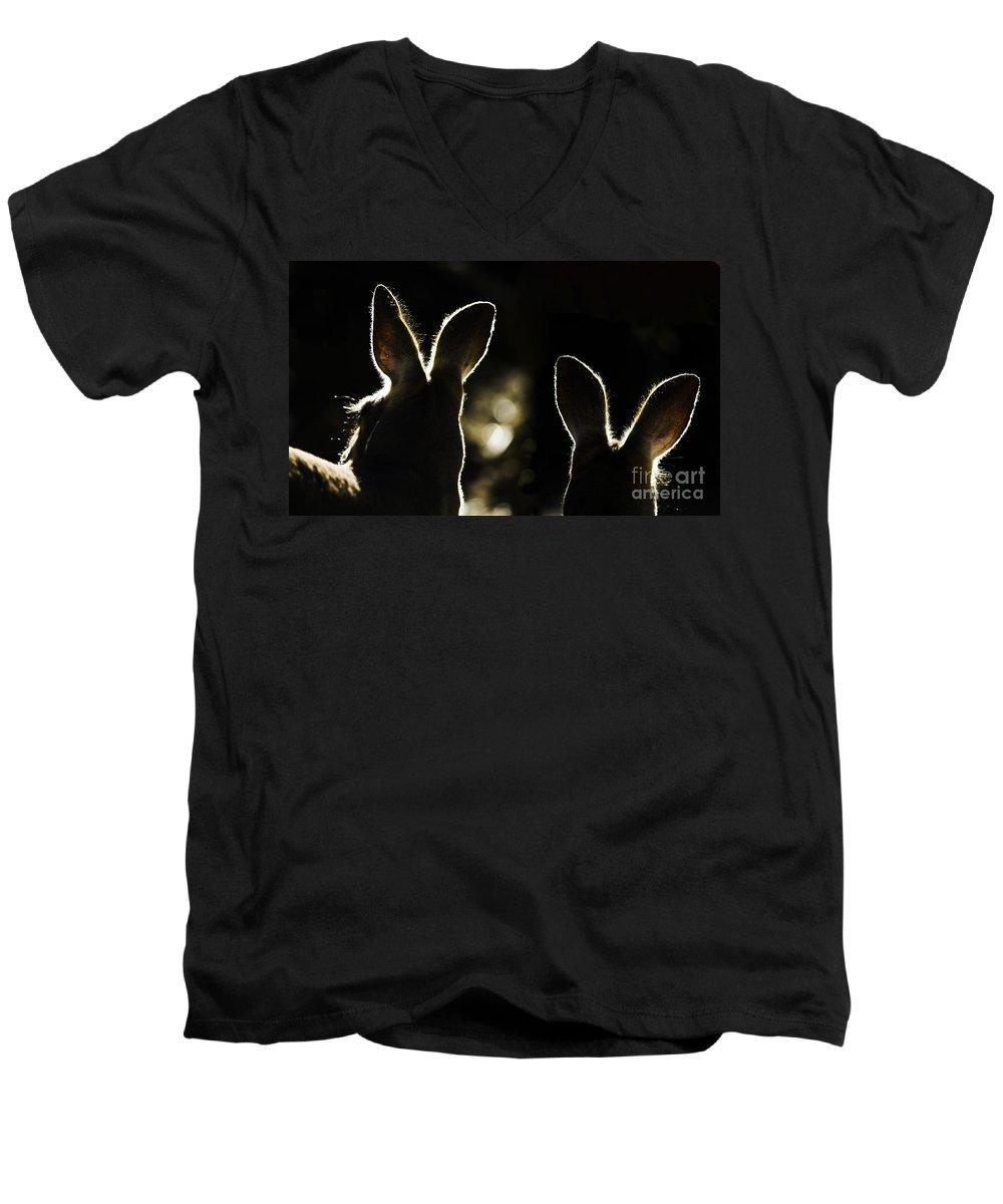 Kangaroo Men's V-Neck T-Shirt featuring the photograph Kangaroos Backlit by Sheila Smart Fine Art Photography