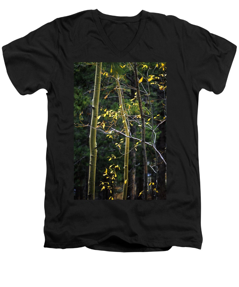 Aspen Men's V-Neck T-Shirt featuring the photograph Late Aspen by Jerry McElroy