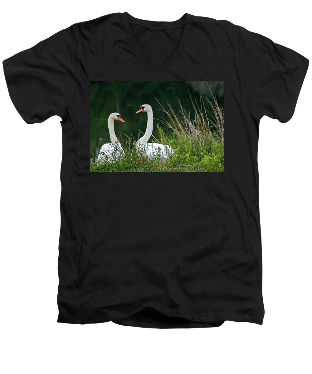 Clay Men's V-Neck T-Shirt featuring the photograph Loving Swans by Clayton Bruster