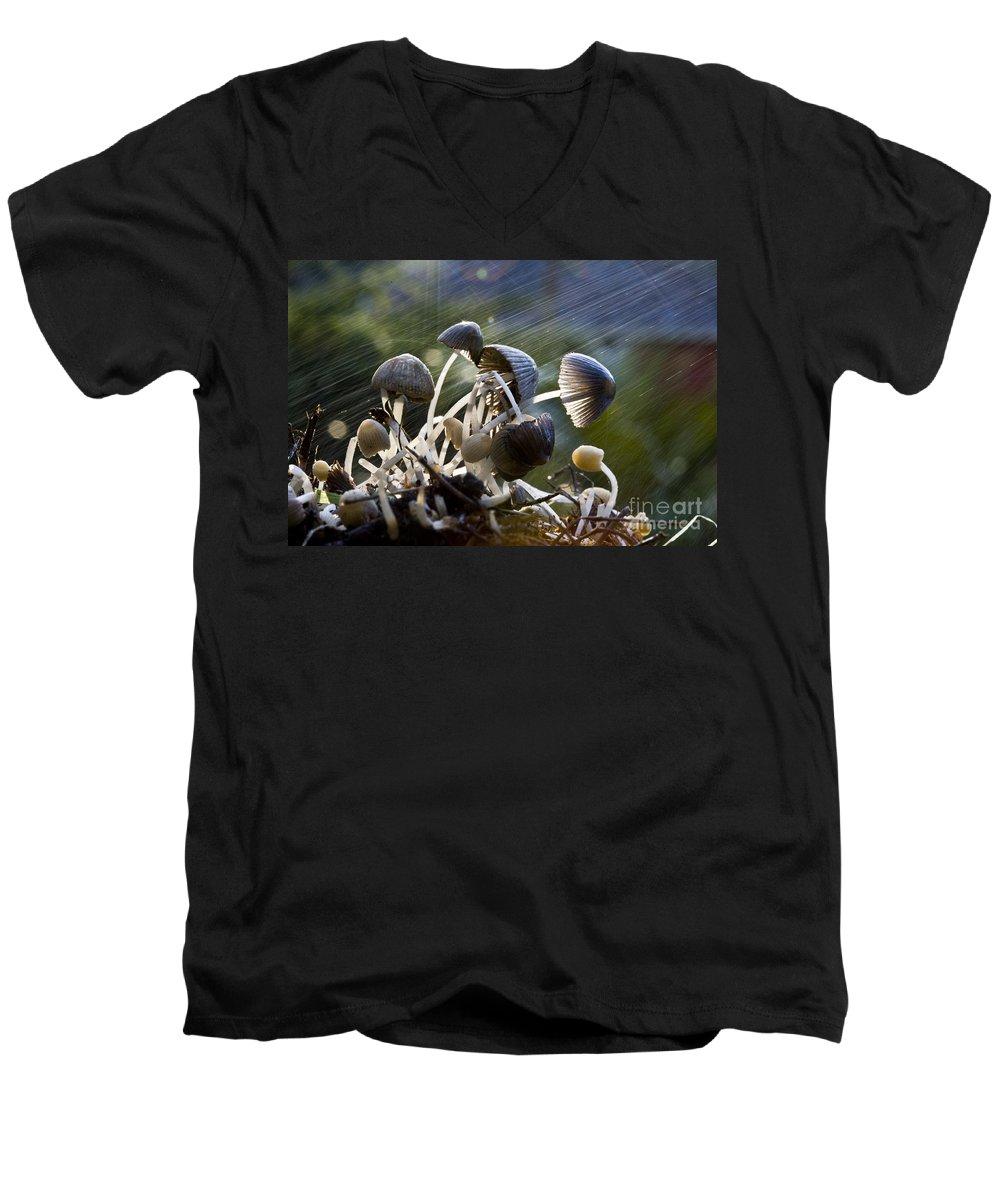 Mushrooms Rain Showers Umbrellas Nature Fungi Men's V-Neck T-Shirt featuring the photograph Nature by Sheila Smart Fine Art Photography
