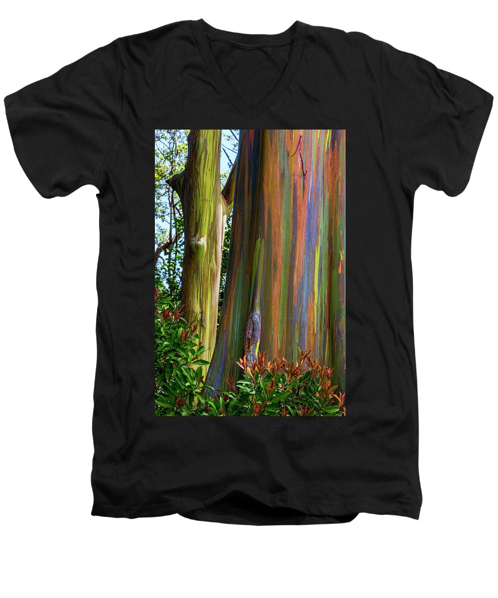Nature's Art Men's V-Neck T-Shirt featuring the photograph Nature's Art by Kelley King