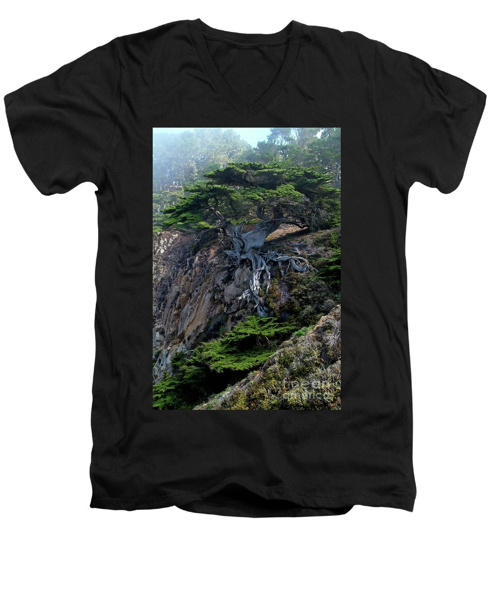 Landscape Men's V-Neck T-Shirt featuring the photograph Point Lobos Veteran Cypress Tree by Charlene Mitchell