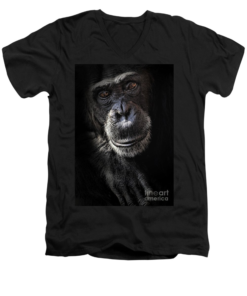 Chimp Men's V-Neck T-Shirt featuring the photograph Portrait Of A Chimpanzee by Sheila Smart Fine Art Photography