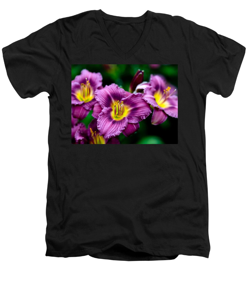 Flower Men's V-Neck T-Shirt featuring the photograph Purple Day Lillies by Marilyn Hunt