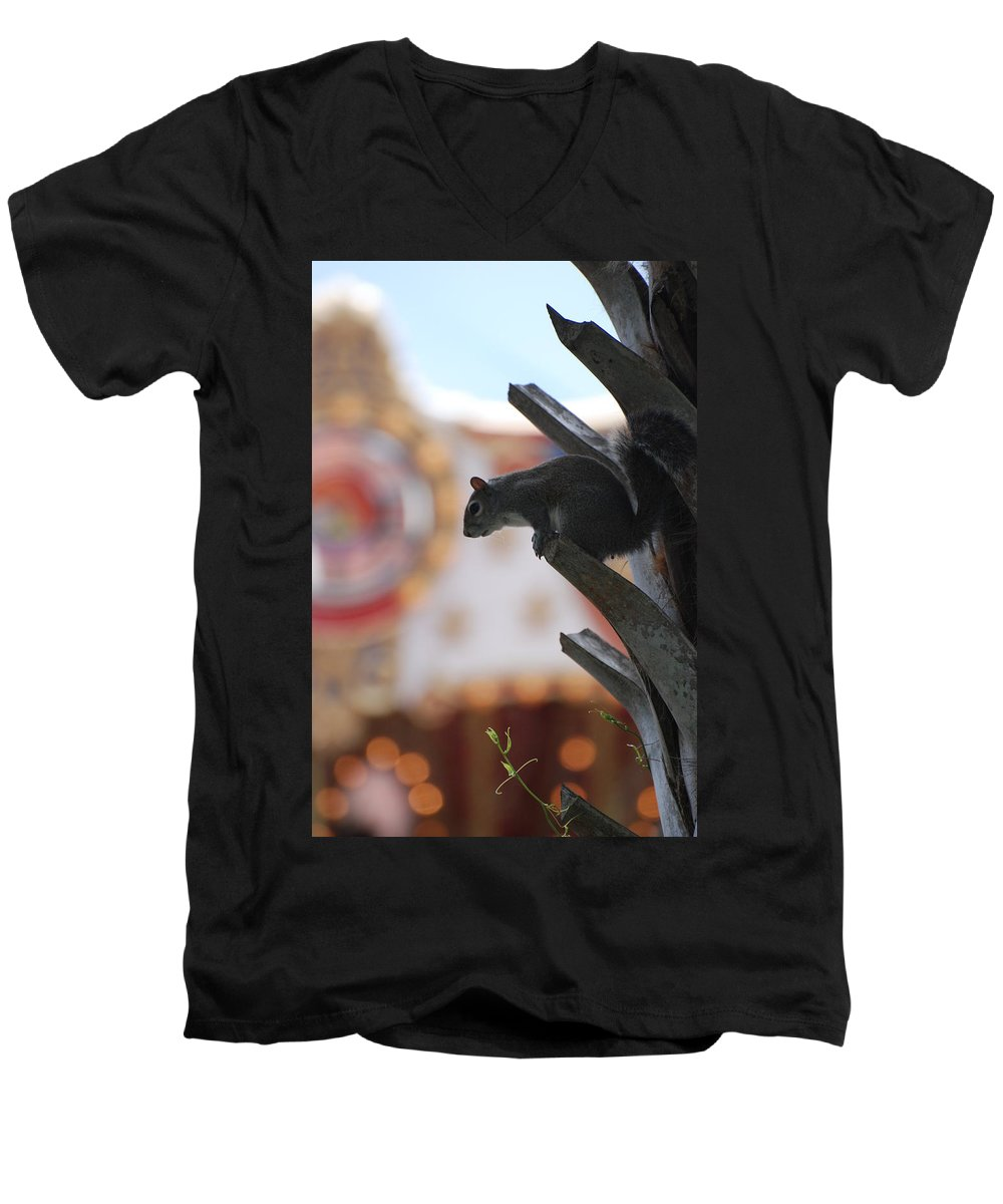 Squirrel Men's V-Neck T-Shirt featuring the photograph Ready To Jump by Rob Hans