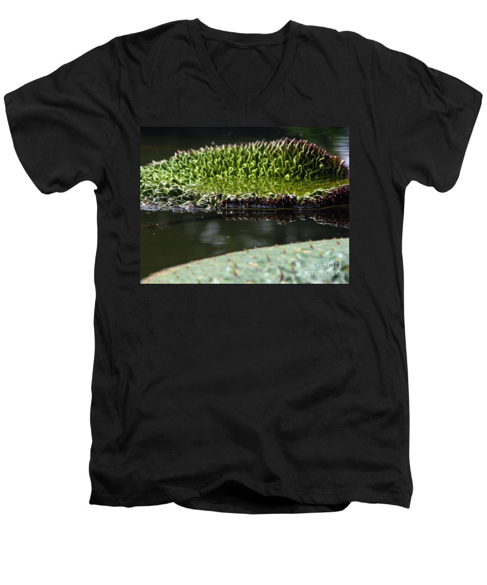 Lillypad Men's V-Neck T-Shirt featuring the photograph Ready To Spread by Amanda Barcon