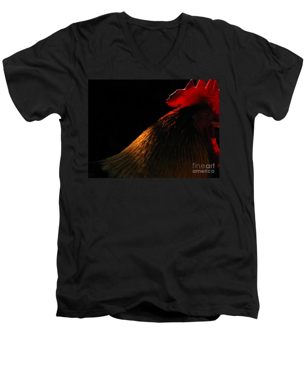 Rooster Men's V-Neck T-Shirt featuring the photograph Rooster by Amanda Barcon