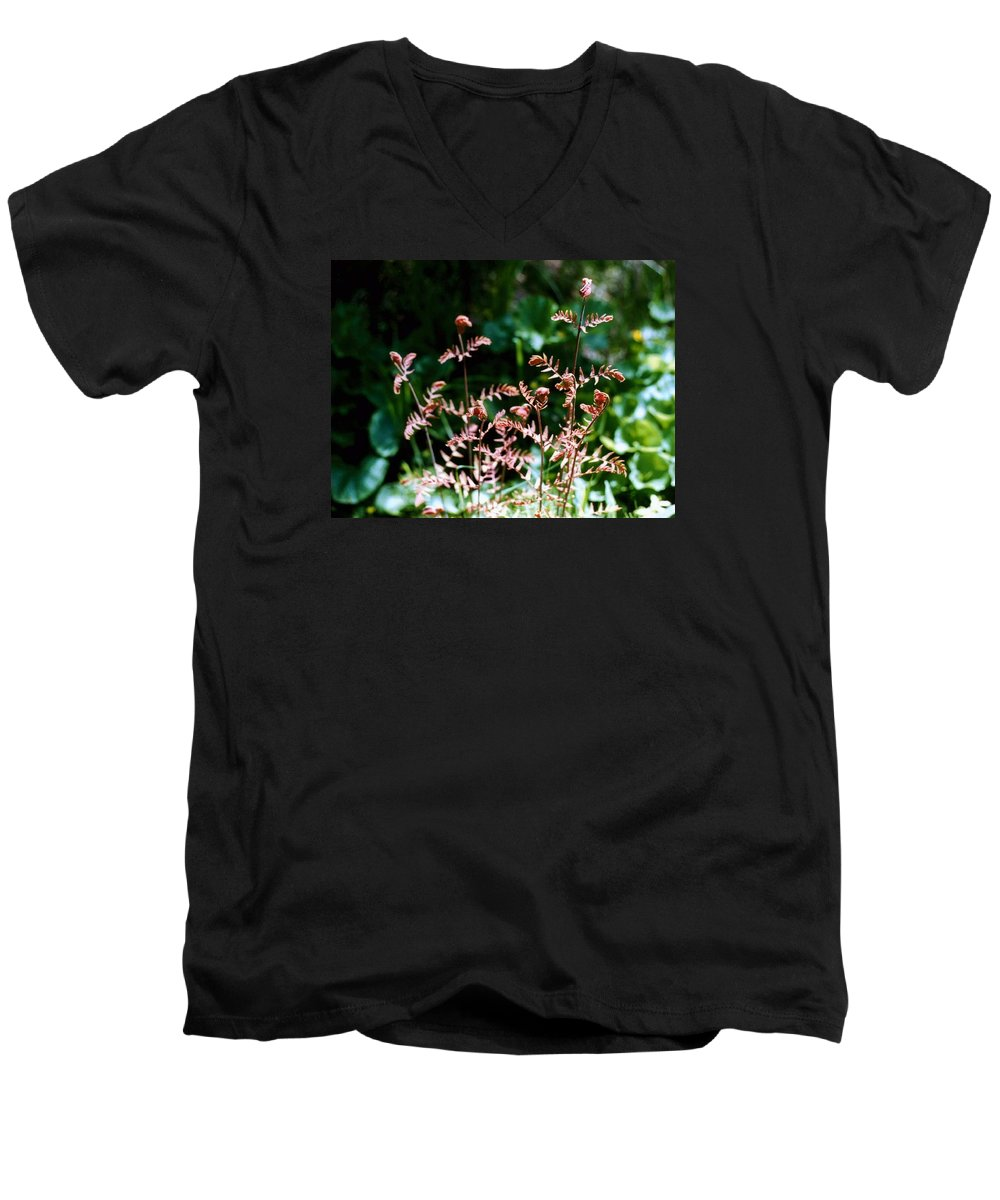 Ferns Men's V-Neck T-Shirt featuring the photograph Royal Fern Fronds by Dave Martsolf