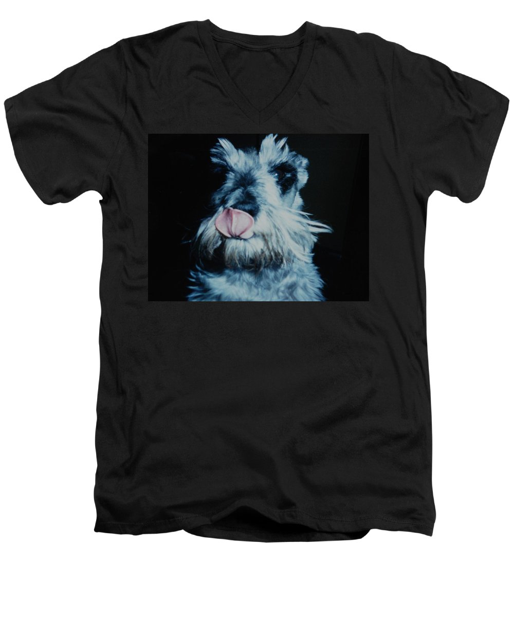 Dogs Men's V-Neck T-Shirt featuring the photograph Sam The Fat Cow by Rob Hans