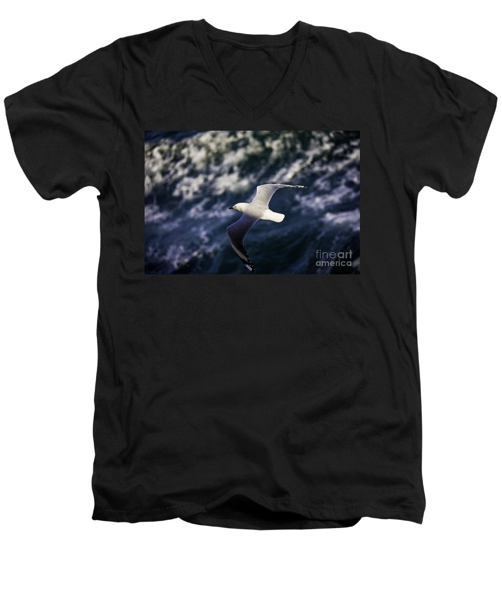 Seagull Men's V-Neck T-Shirt featuring the photograph Seagull In Wake by Avalon Fine Art Photography