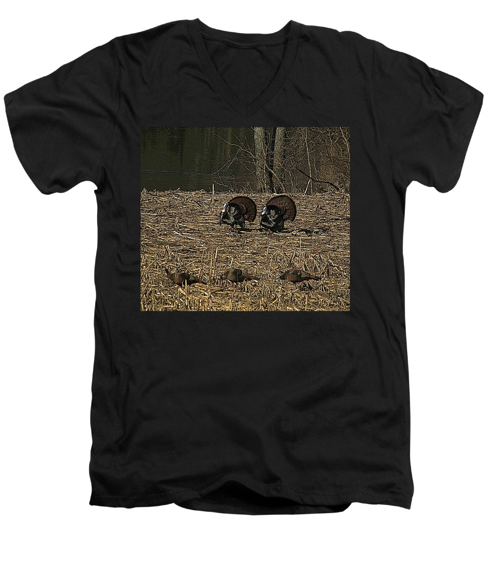 Turkey Men's V-Neck T-Shirt featuring the photograph Strutin For The Ladies by Robert Pearson