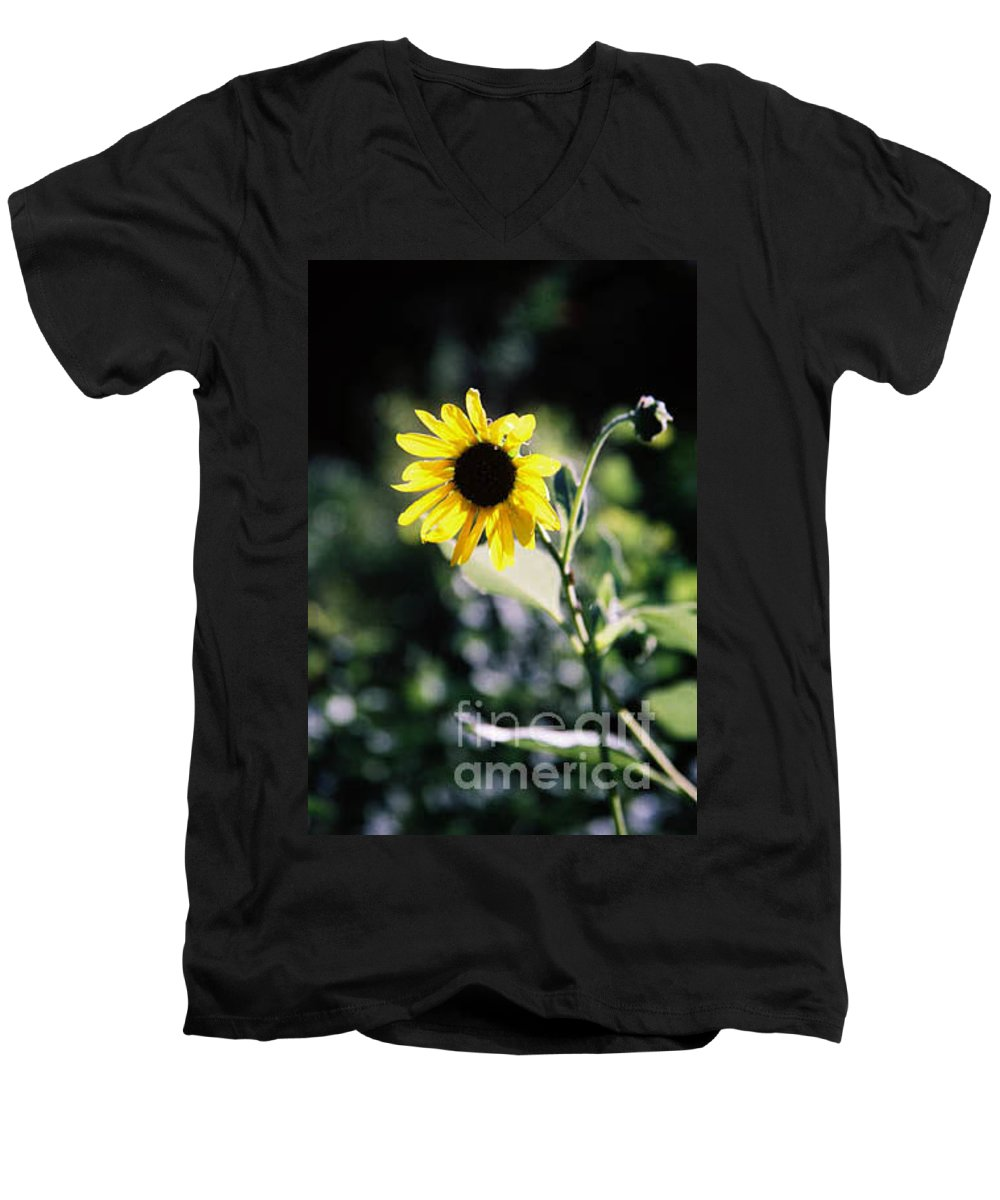 Sunflower Men's V-Neck T-Shirt featuring the photograph Summer Sunshine by Kathy McClure
