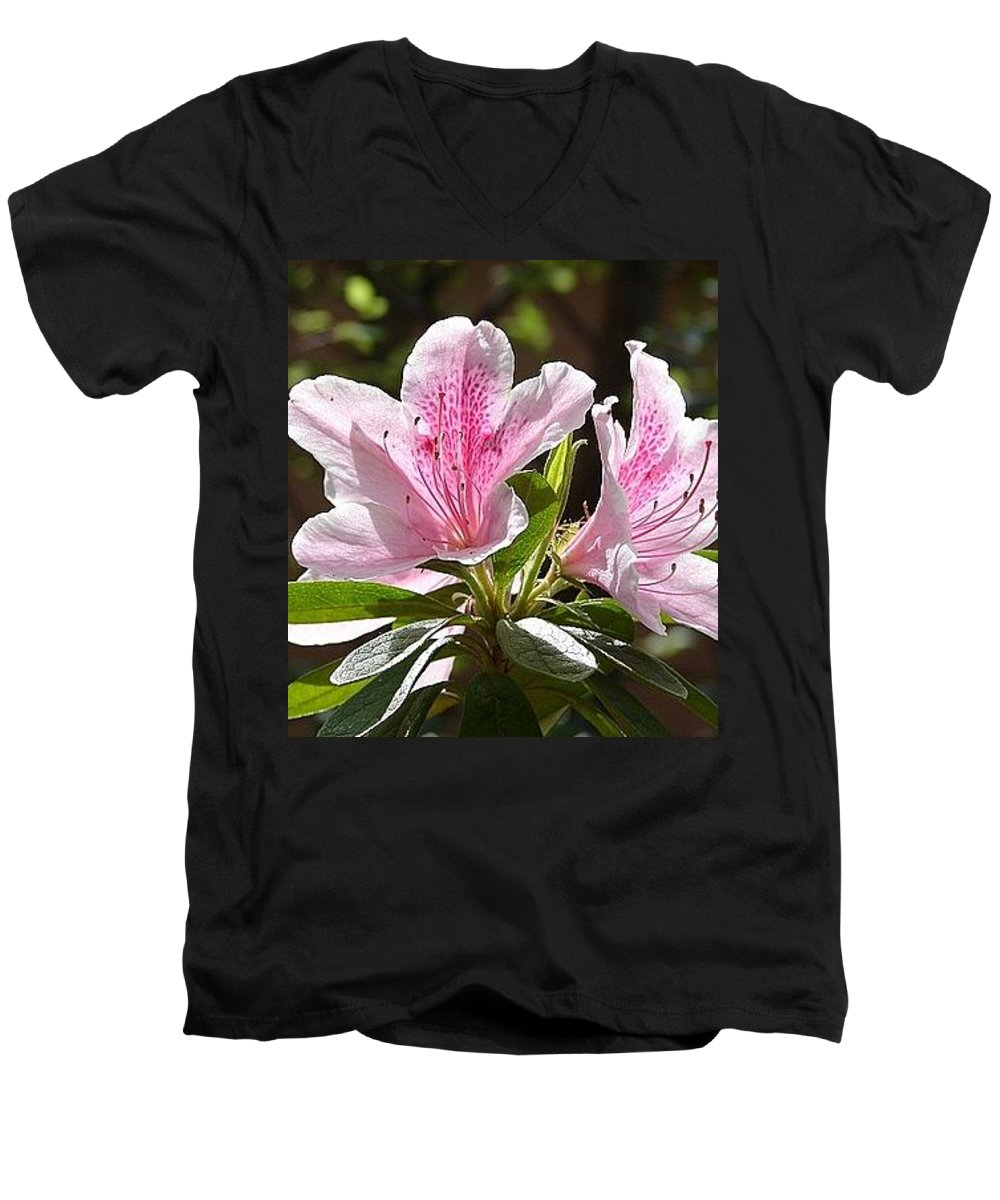 Lily Pinkgreen Pedals Leaves Men's V-Neck T-Shirt featuring the photograph Sunshine by Luciana Seymour