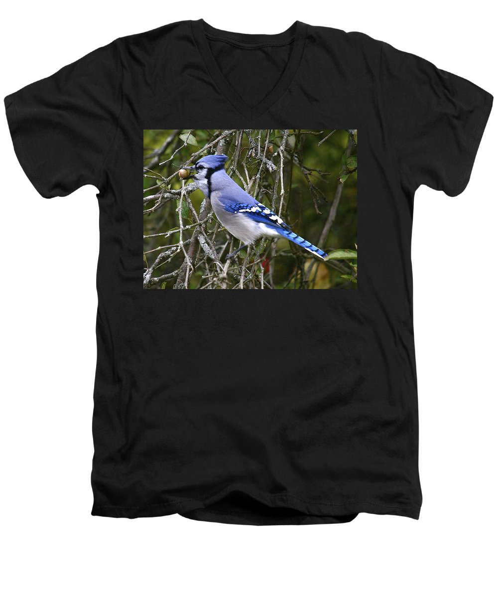 Bird Men's V-Neck T-Shirt featuring the photograph The Gathering by Robert Pearson