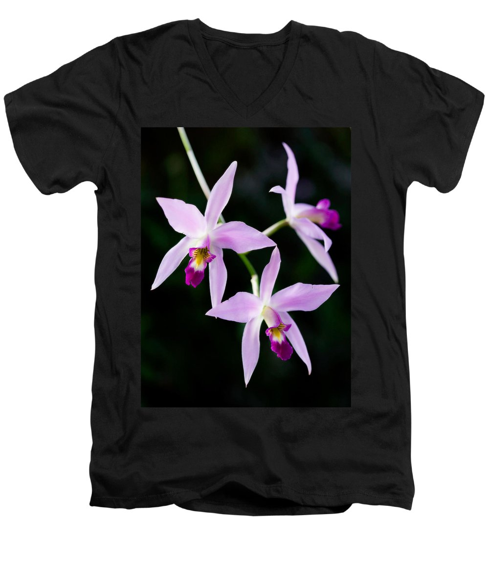 Orchid Men's V-Neck T-Shirt featuring the photograph Three Orchids by Marilyn Hunt