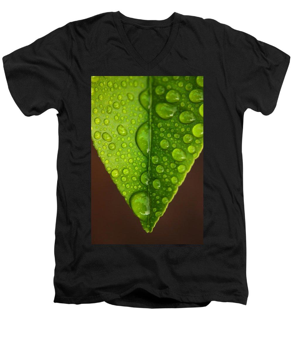 Leaf Men's V-Neck T-Shirt featuring the photograph Water Droplets On Lemon Leaf by Ralph A Ledergerber-Photography