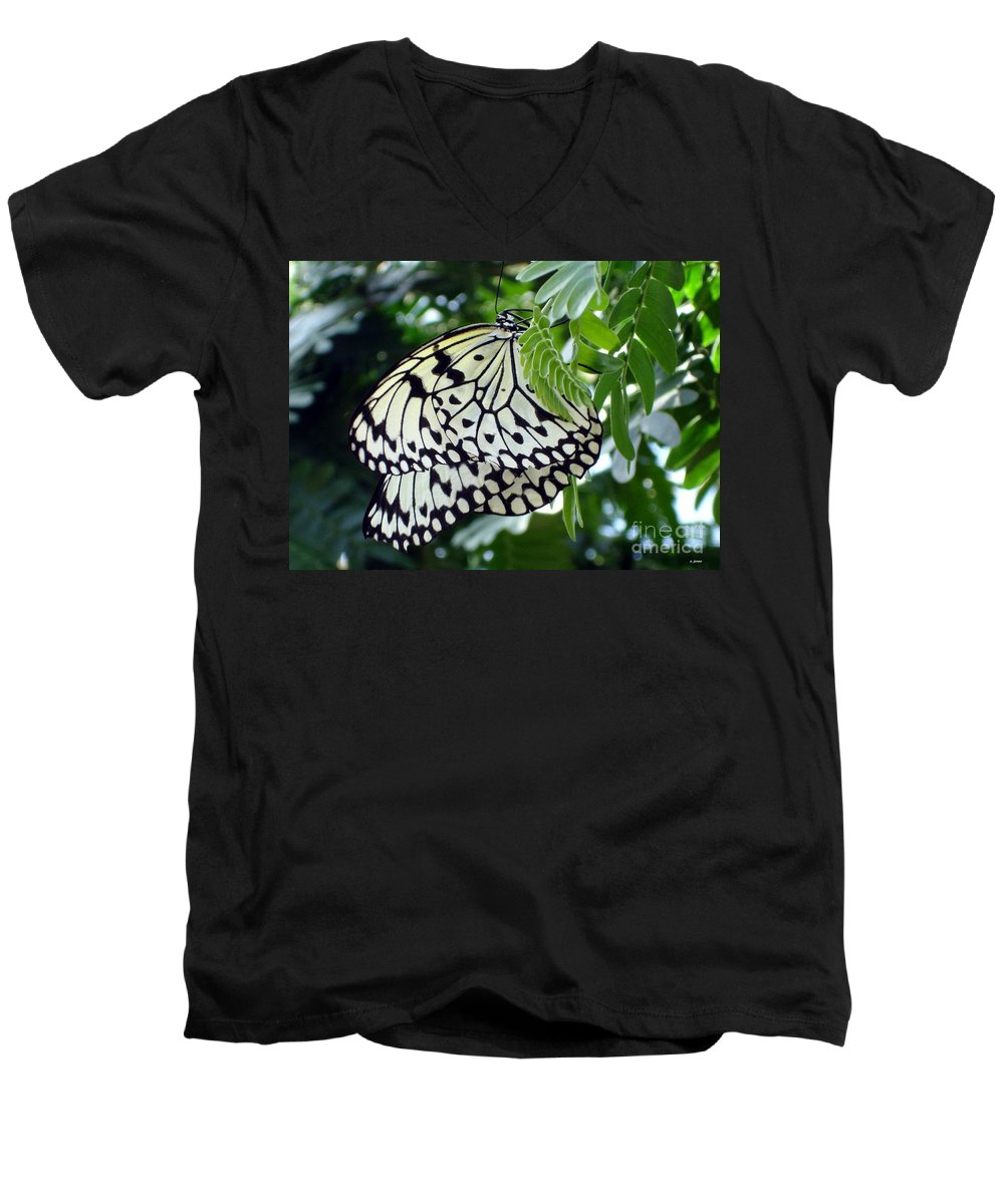 Butterfly Men's V-Neck T-Shirt featuring the photograph Zebra In Disguise by Shelley Jones