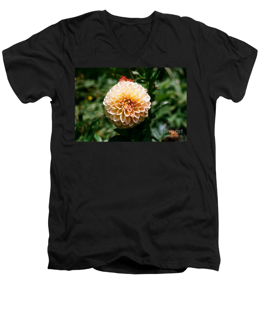 Zinnia Men's V-Neck T-Shirt featuring the photograph Zinnia by Dean Triolo