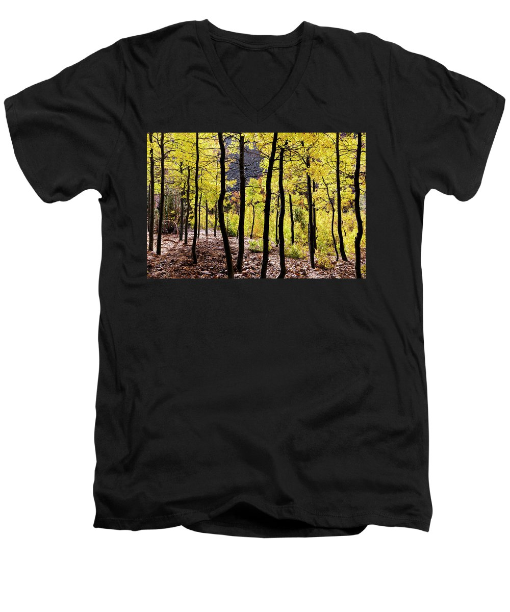 Fall Colors Men's V-Neck T-Shirt featuring the photograph Glowing Aspens With Silhouette Trees by Kelley King