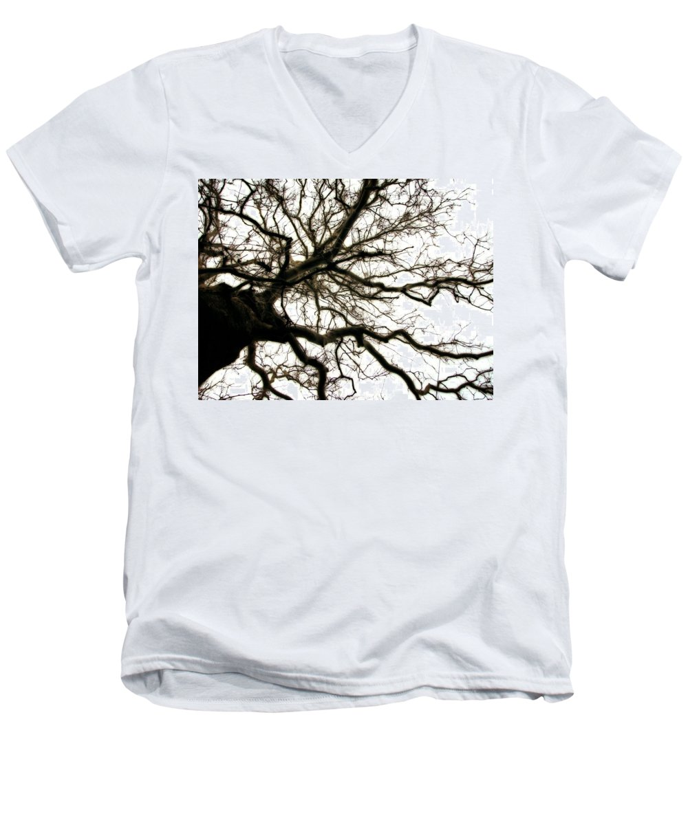 Branches Men's V-Neck T-Shirt featuring the photograph Branches by Michelle Calkins