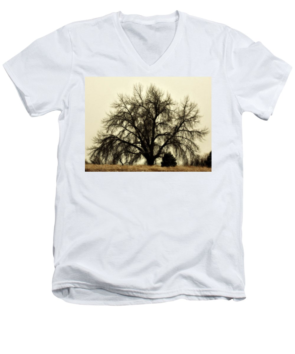 Tree Men's V-Neck T-Shirt featuring the photograph A Winter's Day by Marilyn Hunt
