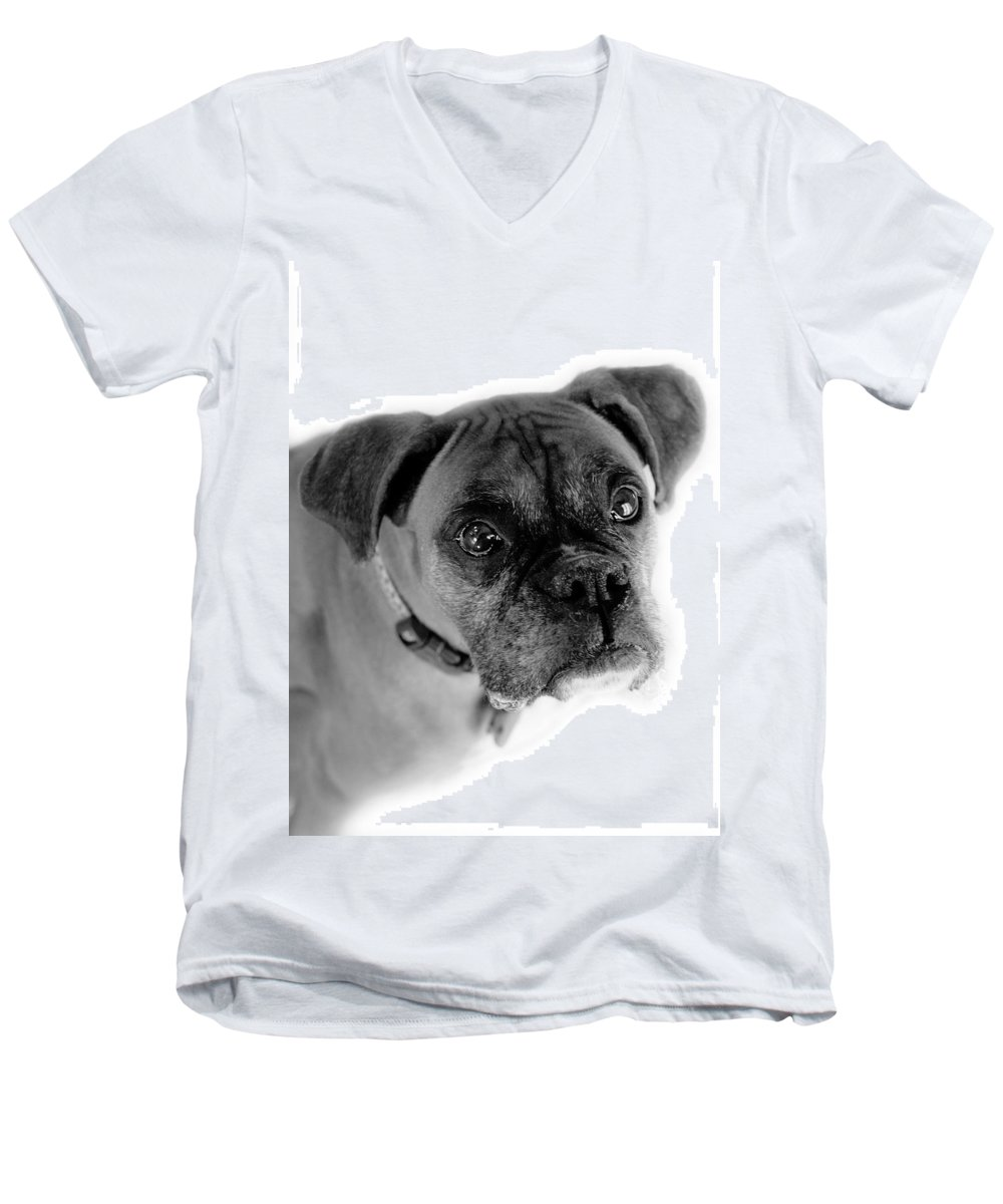 Boxer Men's V-Neck T-Shirt featuring the photograph Boxer Dog by Marilyn Hunt