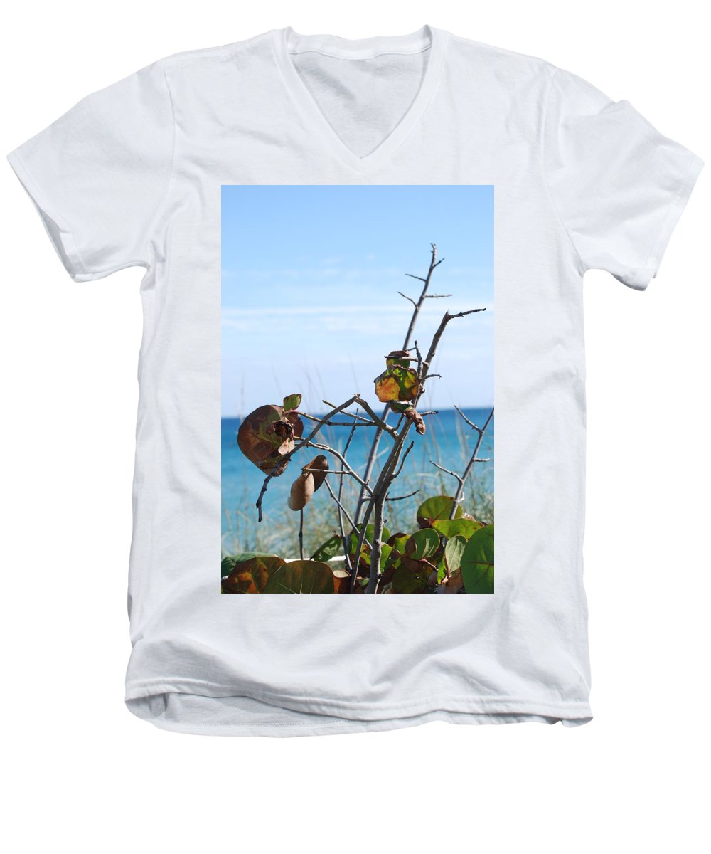 Ocean Men's V-Neck T-Shirt featuring the photograph Dune Plants by Rob Hans
