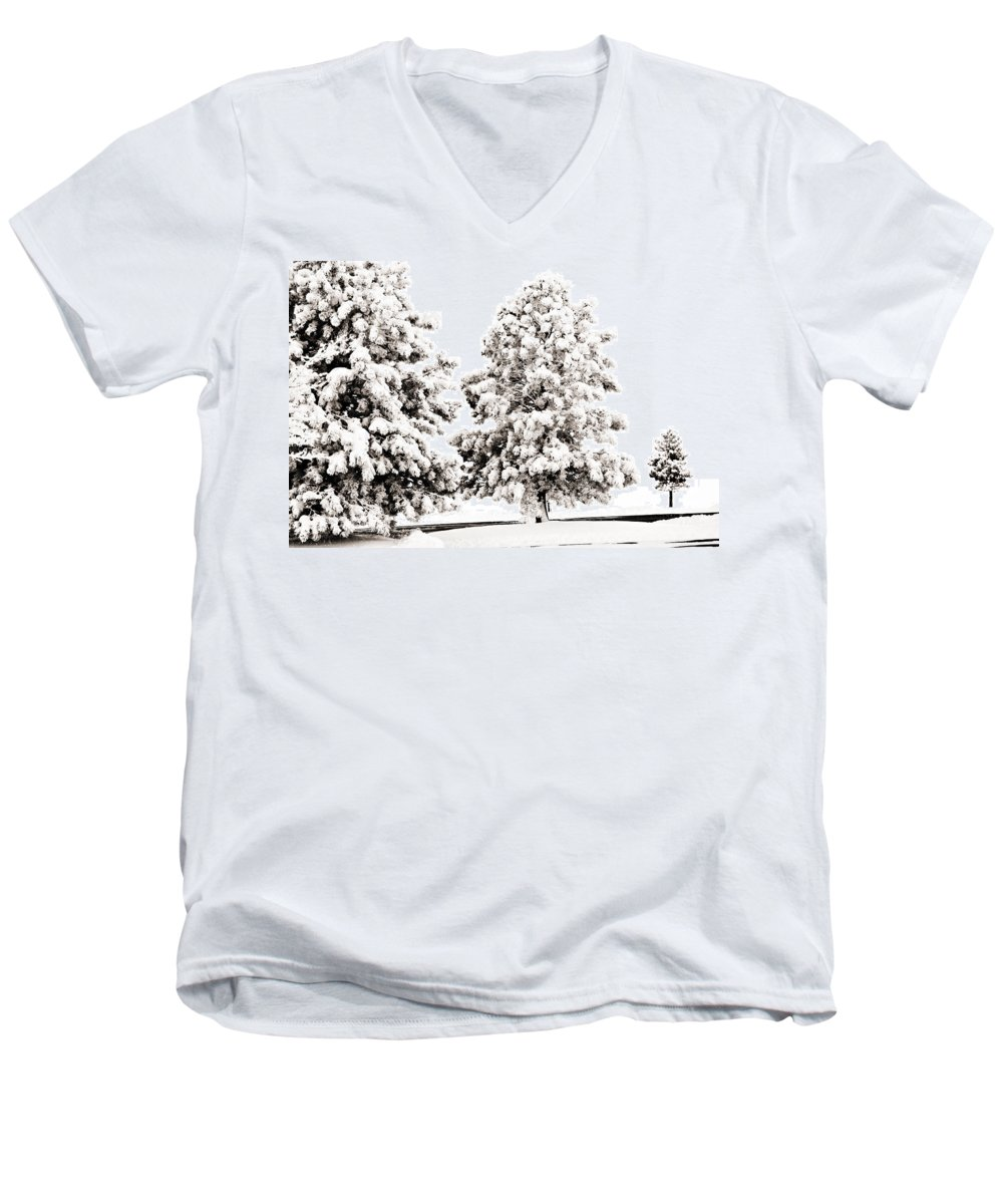 Trees Men's V-Neck T-Shirt featuring the photograph Family Of Trees by Marilyn Hunt