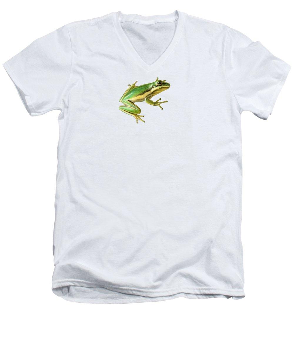 Amphibians V-Neck T-Shirts