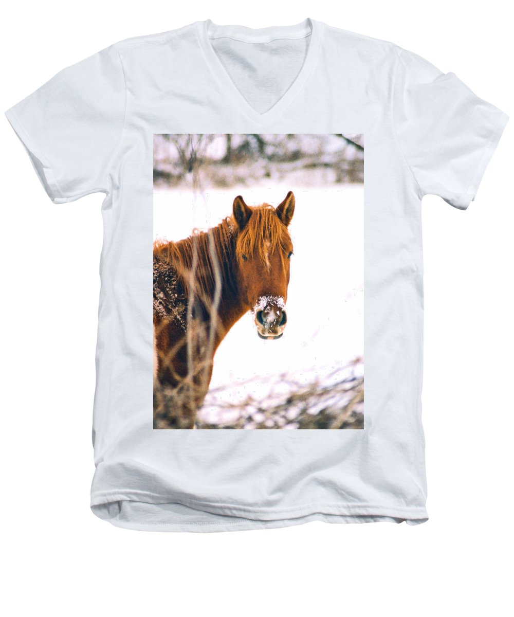 Horse Men's V-Neck T-Shirt featuring the photograph Horse In Winter by Steve Karol