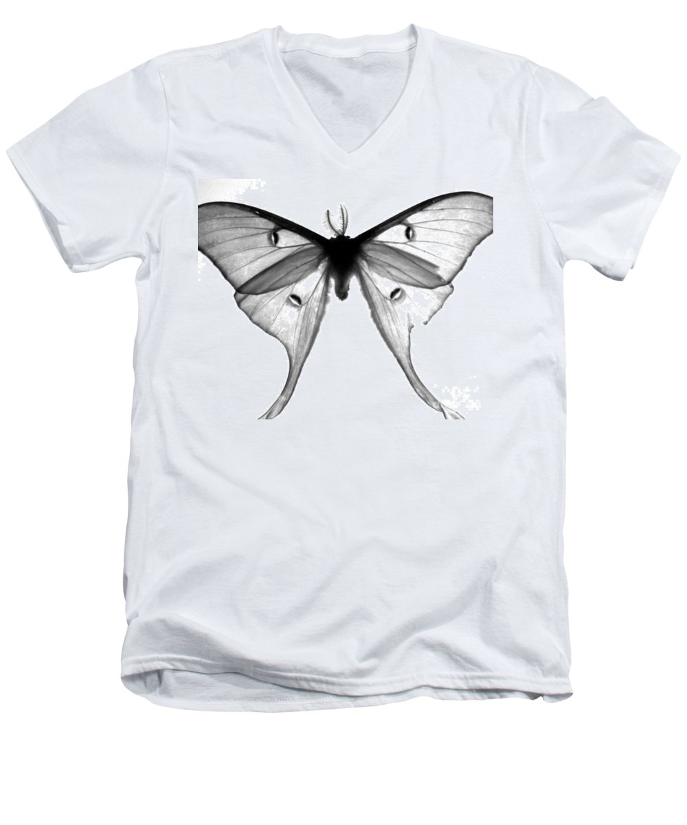 Moth Men's V-Neck T-Shirt featuring the photograph Moth by Amanda Barcon