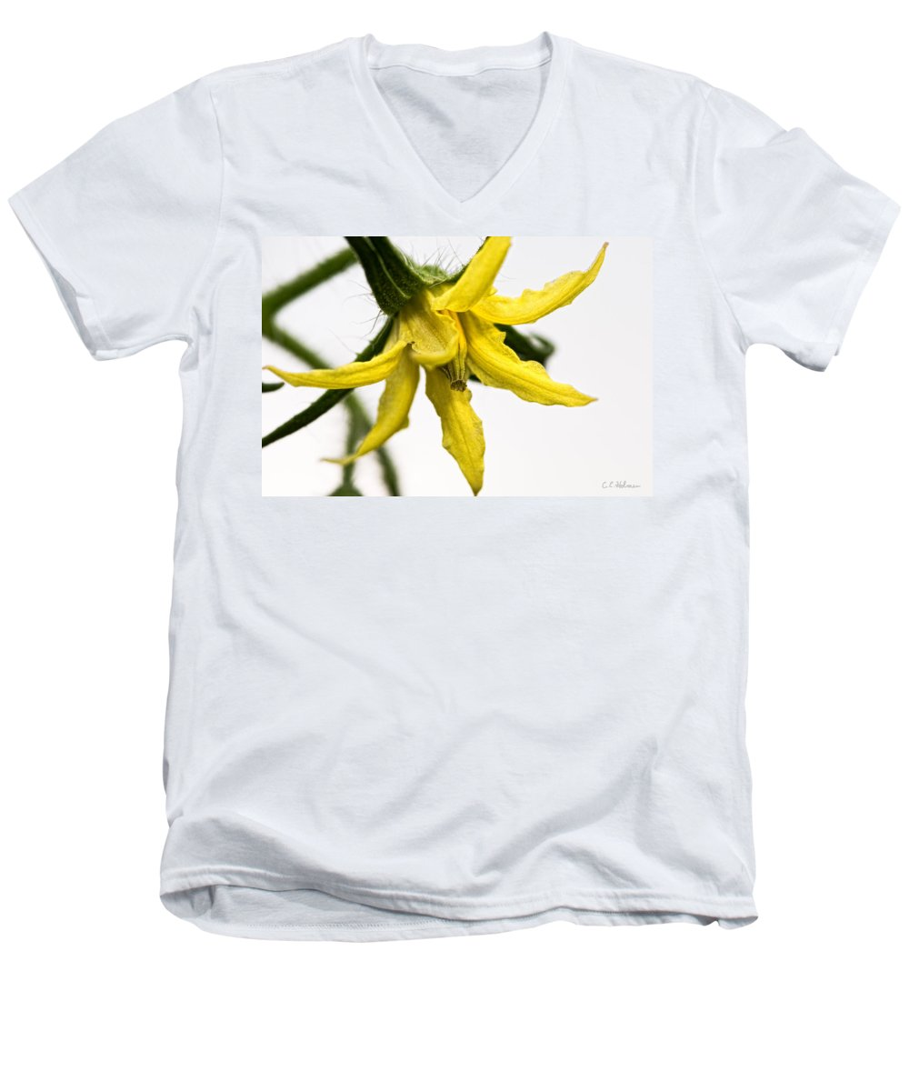 Tomato Men's V-Neck T-Shirt featuring the photograph Pre-tomato by Christopher Holmes