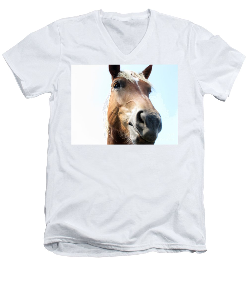 Horse Men's V-Neck T-Shirt featuring the photograph Really by Amanda Barcon