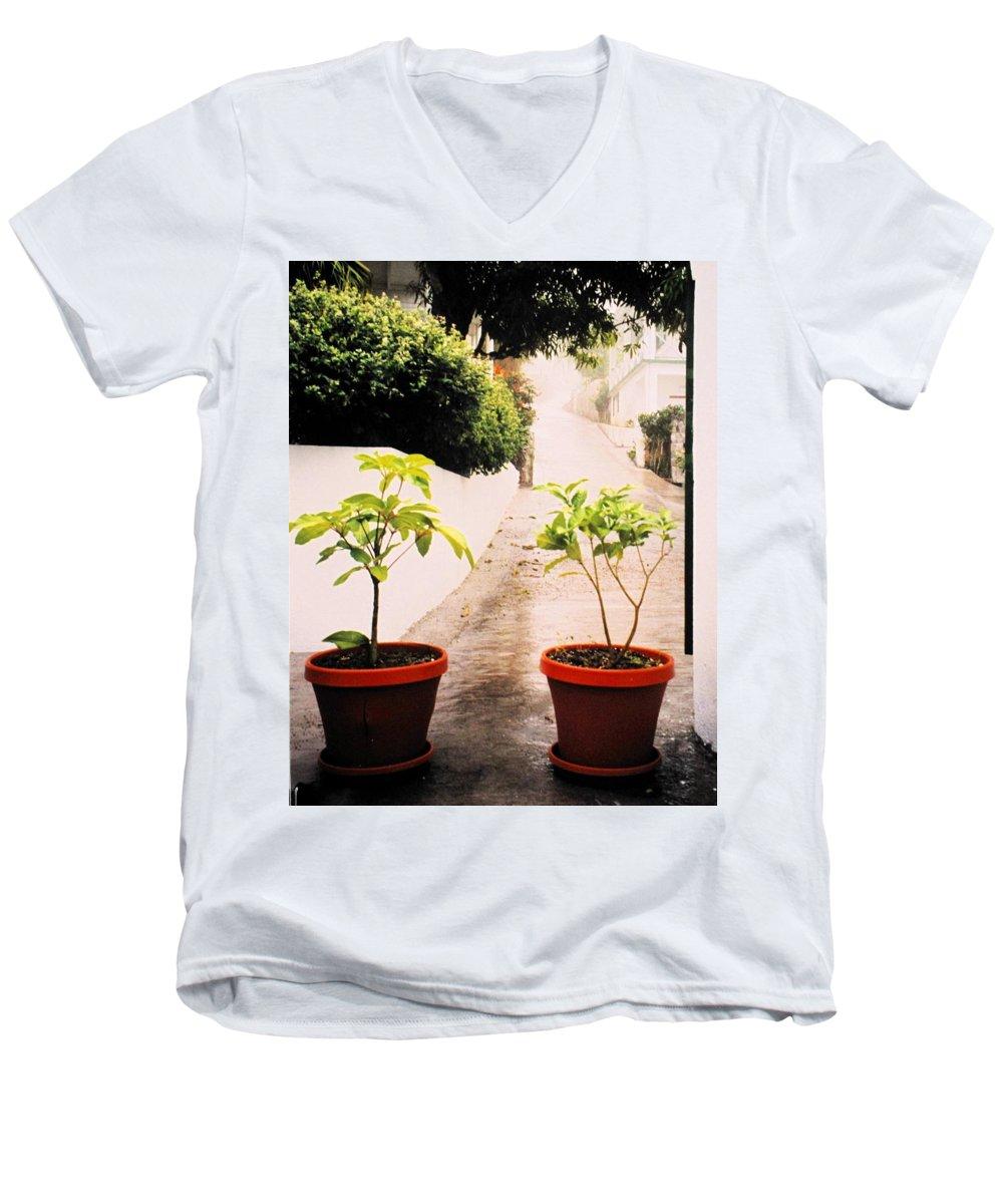 Saba Men's V-Neck T-Shirt featuring the photograph Saba by Ian MacDonald