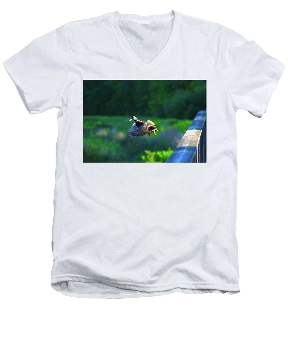 Men's V-Neck T-Shirt featuring the photograph Soft Fly by Tony Umana