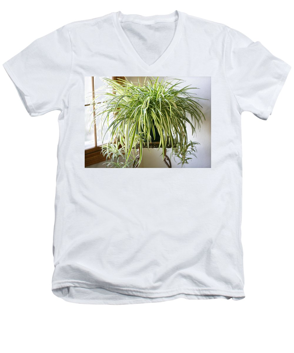 Spider Plant Men's V-Neck T-Shirt featuring the photograph Spider Plant by Marilyn Hunt