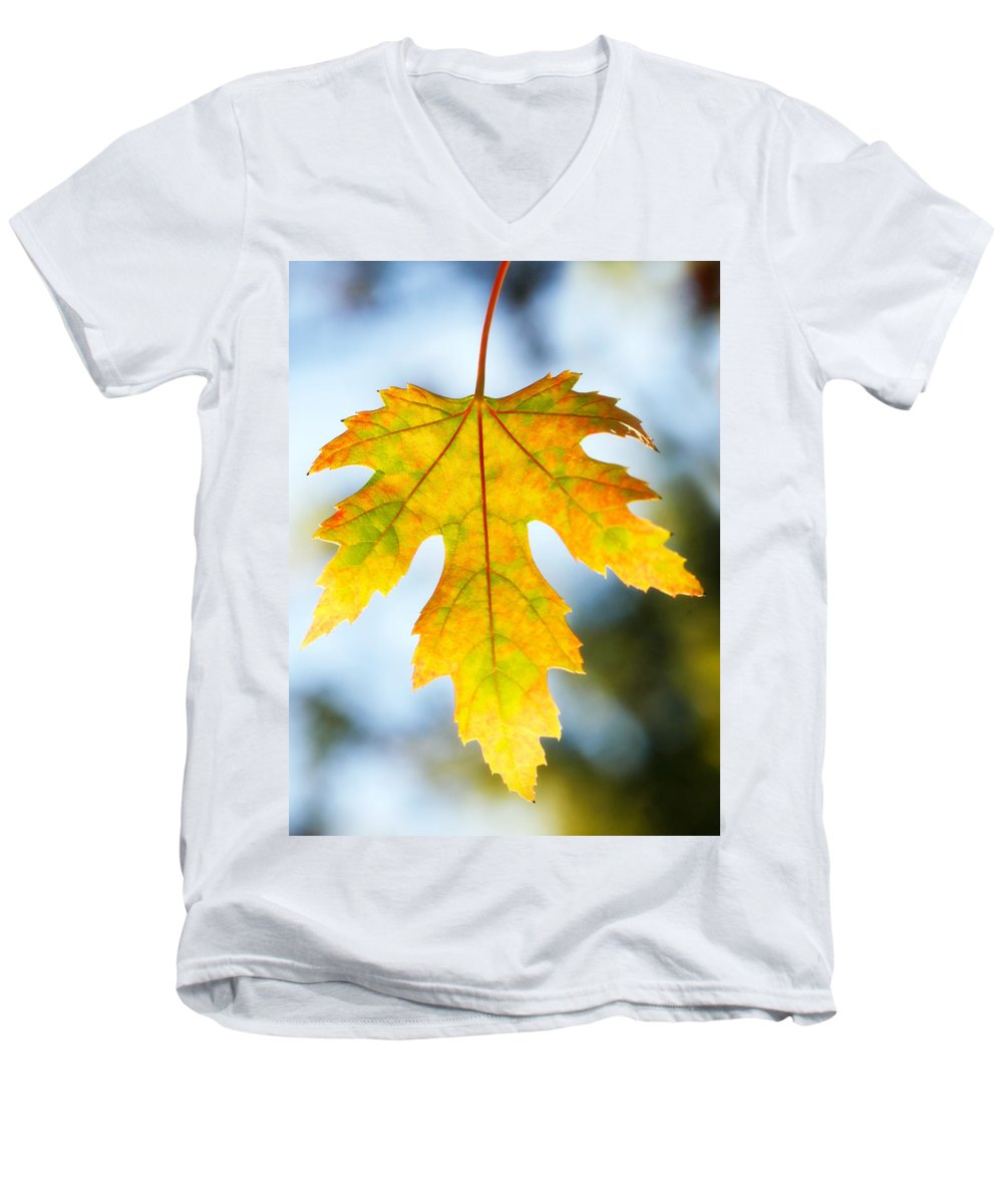 Maple Men's V-Neck T-Shirt featuring the photograph The Maple Leaf by Marilyn Hunt