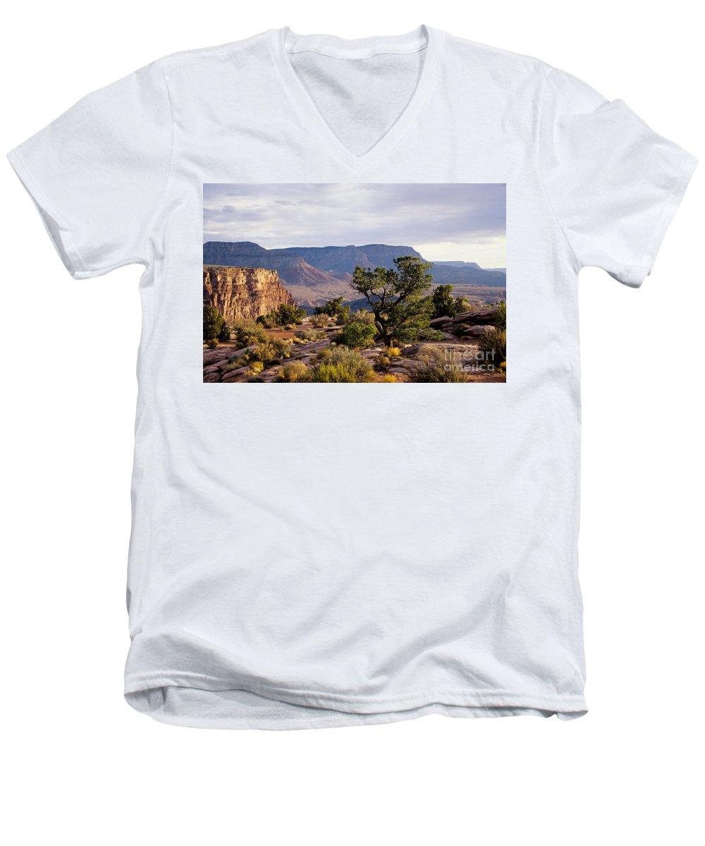 Arizona Men's V-Neck T-Shirt featuring the photograph Toroweap by Kathy McClure