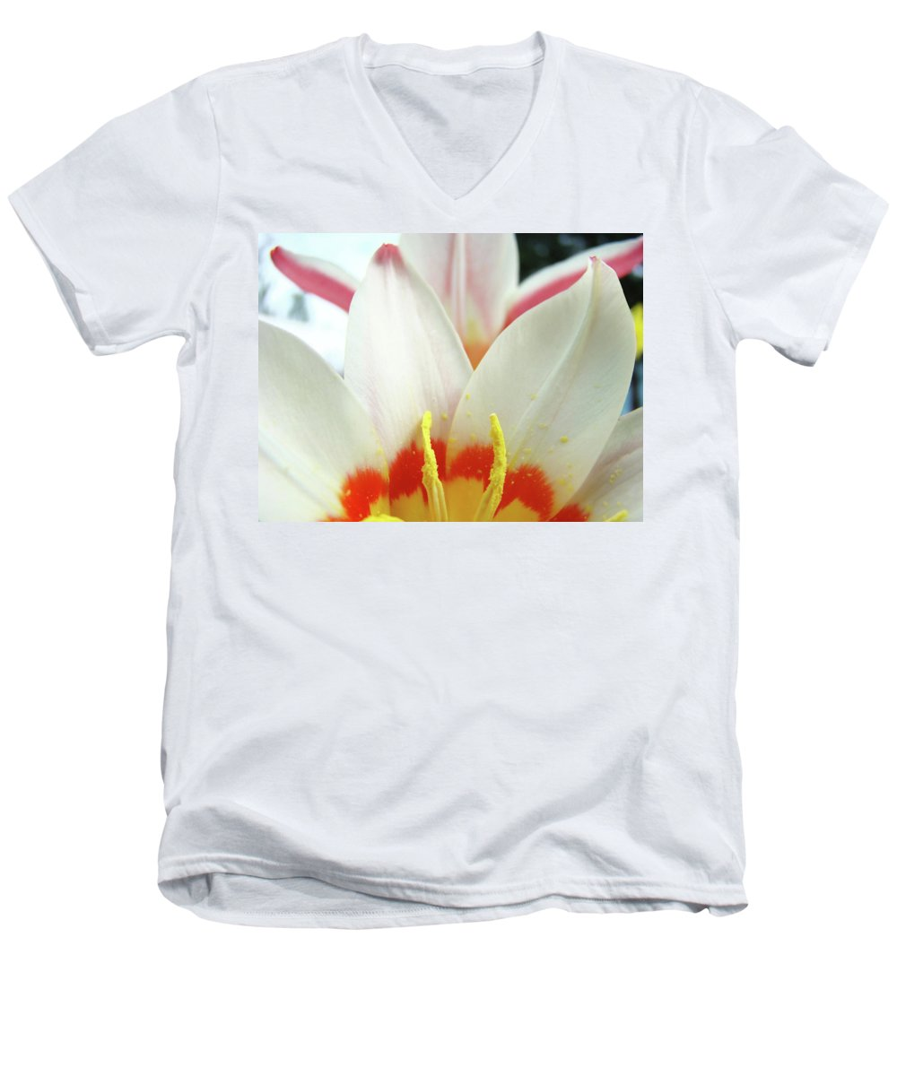 �tulips Artwork� Men's V-Neck T-Shirt featuring the photograph Tulip Flowers Art Prints 4 Spring White Tulip Flower Macro Floral Art Nature by Baslee Troutman