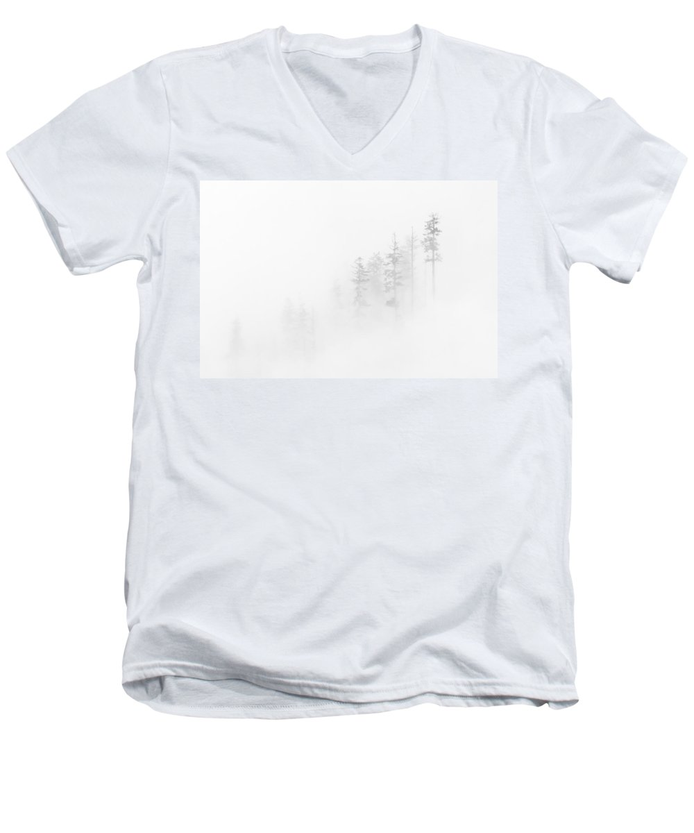 Winter Men's V-Neck T-Shirt featuring the photograph Winter Veil by Mike Dawson