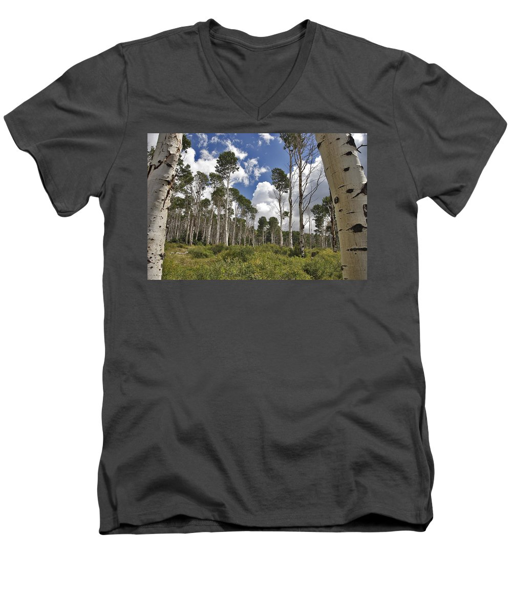 3scape Men's V-Neck T-Shirt featuring the photograph Aspen Grove by Adam Romanowicz