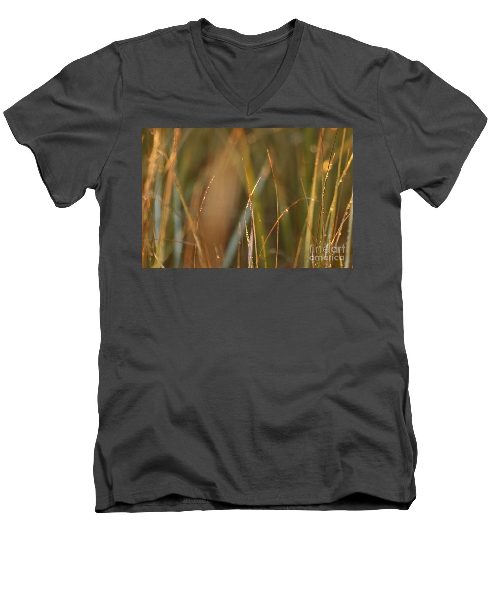 Dew Men's V-Neck T-Shirt featuring the photograph Dewy Grasses by Nadine Rippelmeyer